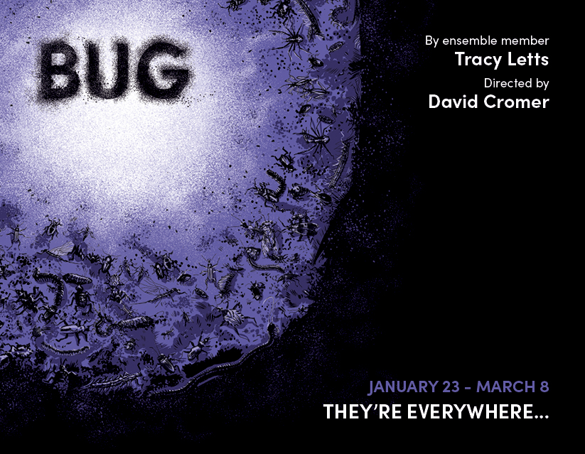 Bug is on sale now